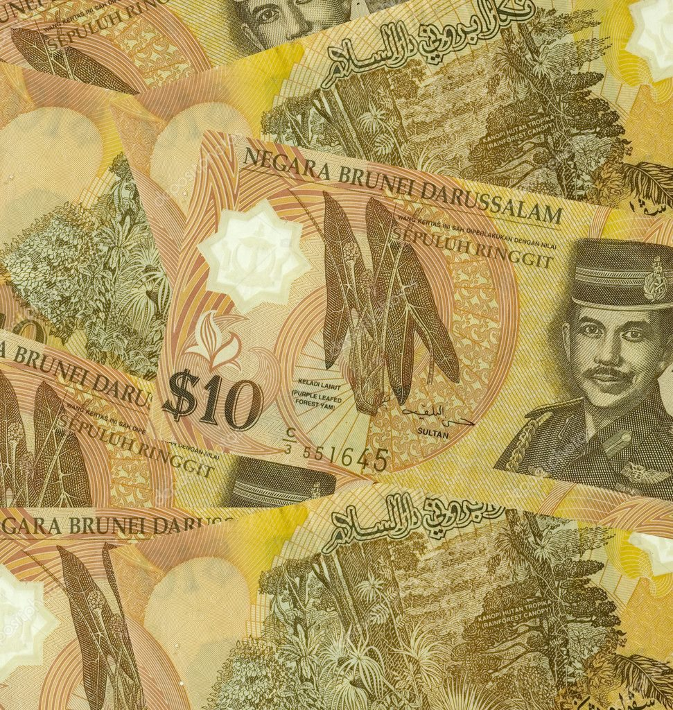 14.The Bruneian Dollar