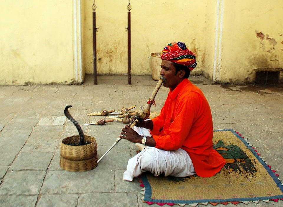 India is a land of snake charmers